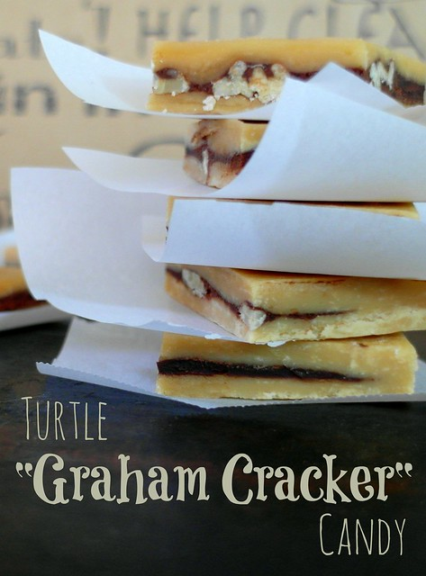 Turtle Graham Crackers Candy