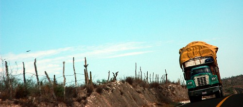 Truck hauling stuff long distance, fenced desert, bird on the wing, Baja, Mexico by Wonderlane