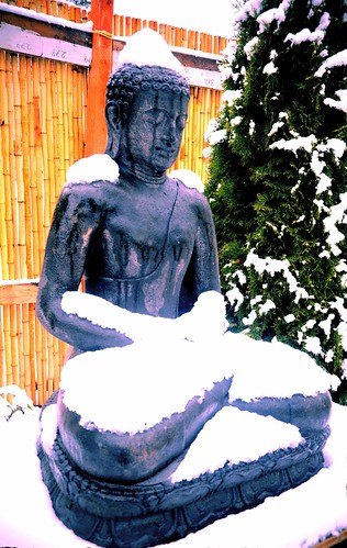Covered in snow, natural ushnisha, a concrete statue of Amitabha Buddha, the brave lion among men, meditating, bamboo fence, tree, drips of water, lotus base, A Garden for the Buddha, Seattle, Washington, USA by Wonderlane