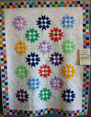 Sisters Choice is Hand Dyes~Quilt by Elin Thomas