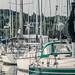 Bayfield Marina