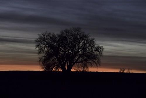 logancounty logan colorado landscape sun sunset tree lonetree dark nature horizon orange clouds bbbb onsmugmug 2017 taken2017 best2017 b4