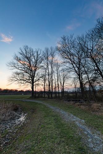 mountlaurel newjersey unitedstates trotters crossing complex 1635mm f4l canon 5d mark iv eos 5dmarkiv 5dm4 5dmk4 5d4 ef1635mmf4lisusm ef tree trees sunset dusk sky us