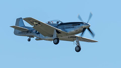 P51 Toulouse Nuts