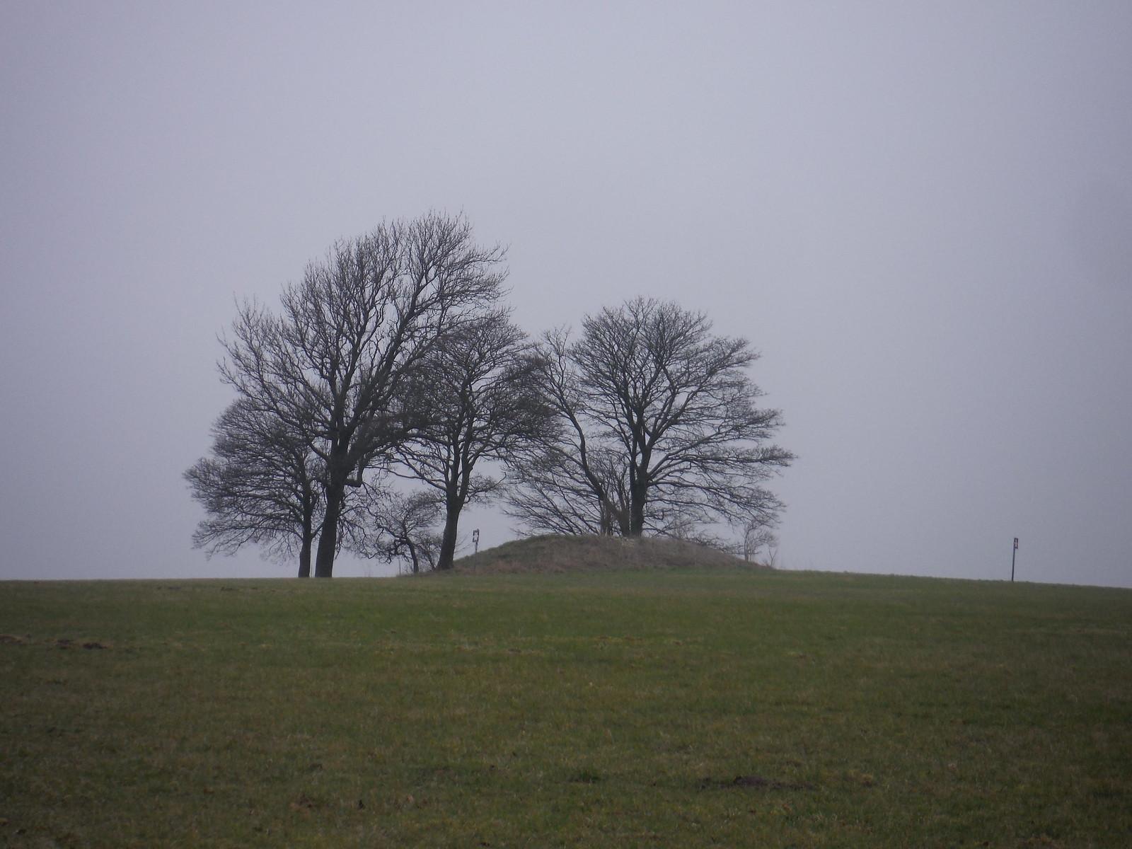 Middle Hill (Tumulus) SWC Walk 286 Westbury to Warminster (via Imber Range)