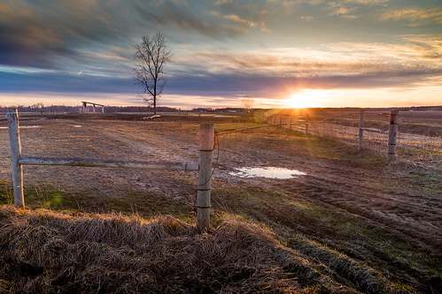 fence sundown sunset puestodelsol field campo puddle soggy wet tree track tracks fencepost wirefence canoneos5dmarkiv