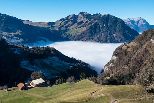 bauernhof berg nebel nidwalden niederrickenbach ort schweiz wald ch