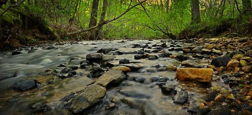 creek water nature outdoors forest rocks landscape wolfcreek georgia douglascounty