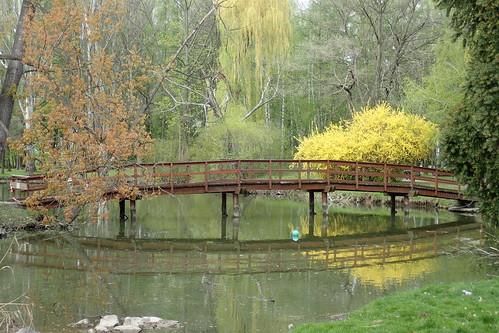 étang parc printemps nitra pont bois reflets couleurs arbres eau promenade