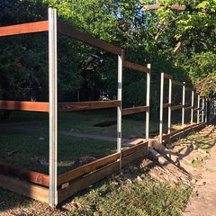 The frame for the new #fence is up! Should be complete by tomorrow. Sadly, they had to clear away a ton of shrubbery. But it's spring, and it'll fill back in in no time! #rockwood #remodel #renovation #oakcliff #dallas #thisoldhouse #home