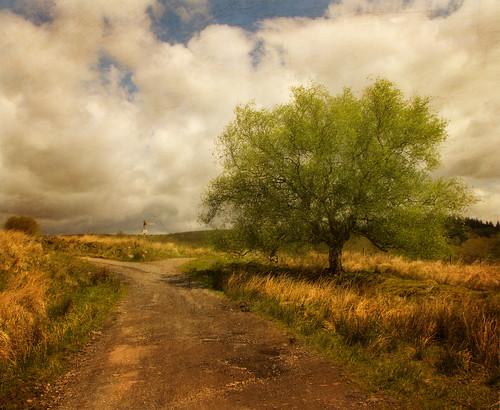 Crossroads...