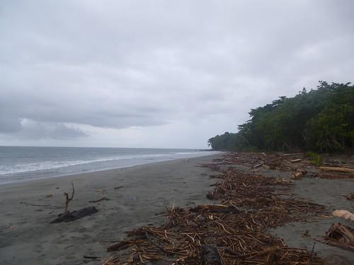 Papua13-Manokwari (54)