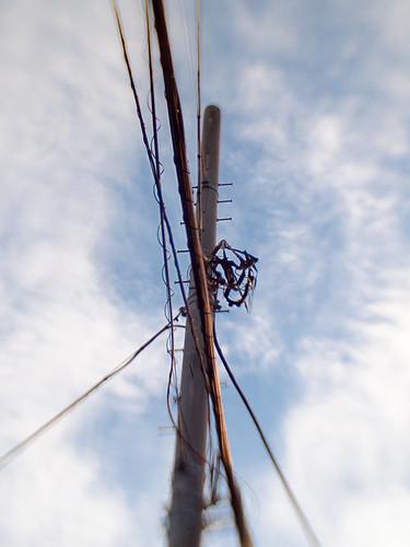 an utility pole