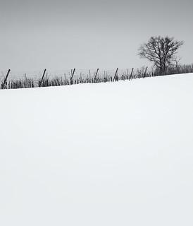 Snow everywhere III