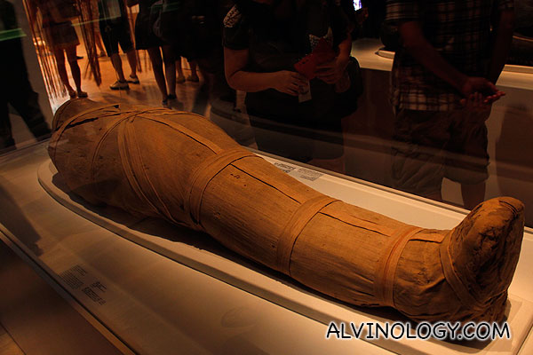 A mummy with a body inside