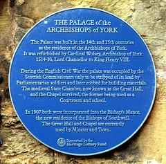 Photo of Thomas Wolsey blue plaque