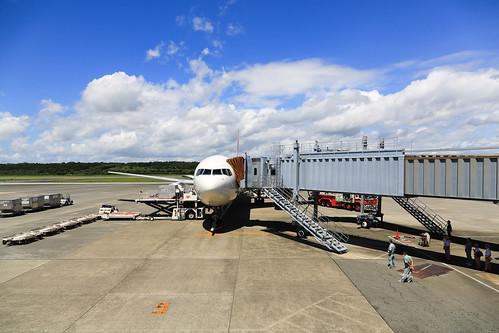 熊本空港は南国のにおい