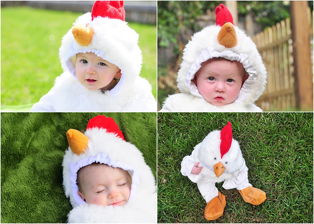 The Day 194 chicken suit2