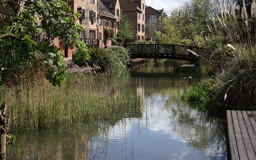 London Yard Pond