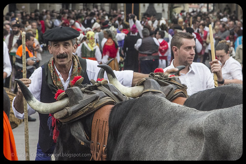 Día de Campoo, Reinosa 2013