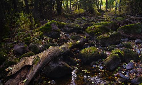 nikon rocks stream dry nikkor mossy jyrki 2880mm kotka d600 salmi langinkoski mygearandme mygearandmepremium mygearandmebronze mygearandmesilver mygearandmegold