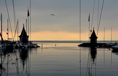 automne eau lumière lac léman matin ombres morges