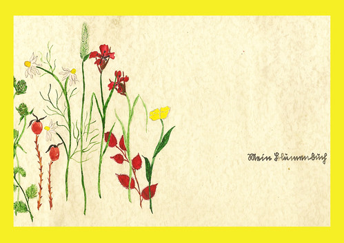 Blumenbuch Herbarium Pflanzen Blumen pressen trocknen sammeln malen zeichnen Gedicht Aufsatz Märchen Scherenschnitt handschriftlich Handschrift Sütterlin alt