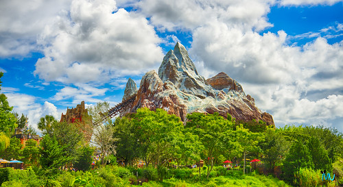 Mount Everest at Animal Kingdom Disney
