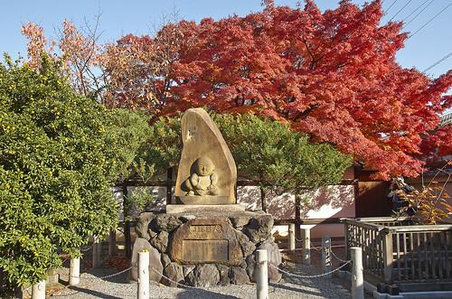 【写真】紅葉 : 宝鏡寺