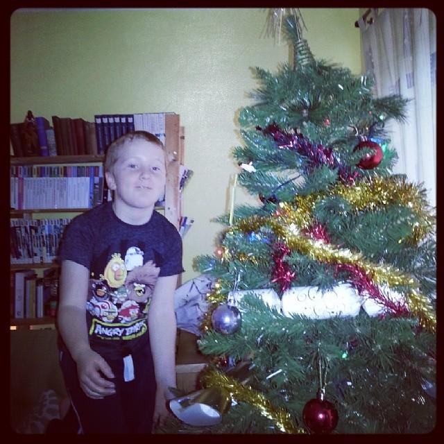 Harry decorates the Christmas tree