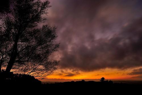 sunset sussex eastsussex ashdownforest sussexwildlifetrust naturethroughthelens