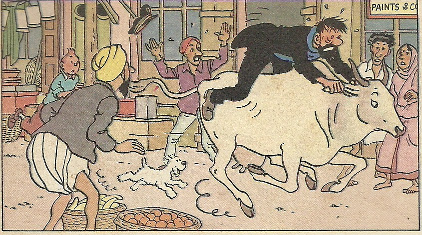 City Books – Tintin in Delhi, Around Town