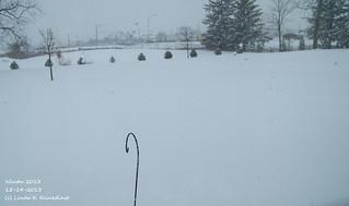 100_9024 - Winter 2013 - 12-14-2013