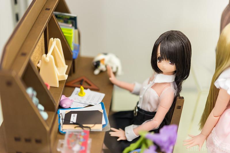 AzoneLS秋葉原_20140102-DSC_0355