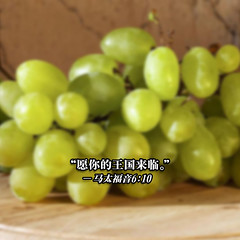 plant(0.0), gooseberry(0.0), grape(1.0), produce(1.0), fruit(1.0), food(1.0),