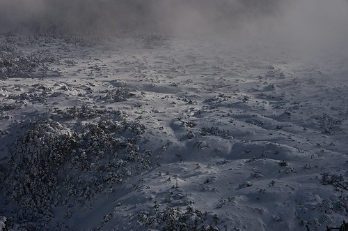 snow fog yatsugatake