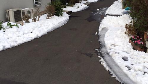 大雪の翌々日の様子