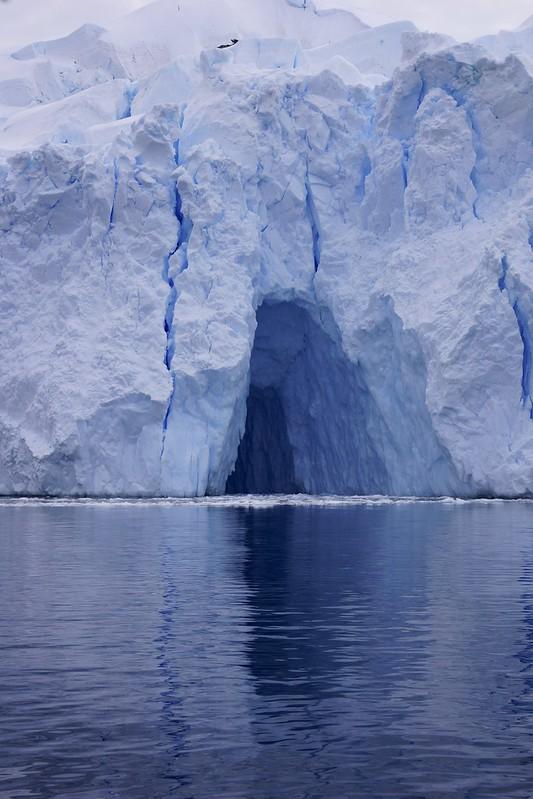 antarctic 3 base brown 108