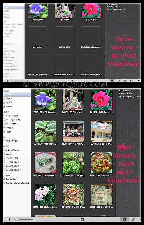 Screen shots of sections of my iPhoto Library to illustrate the 'before and after' recovery results