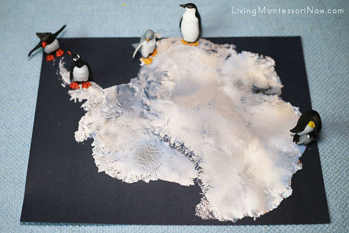 Penguins on Satellite Map of Antarctica