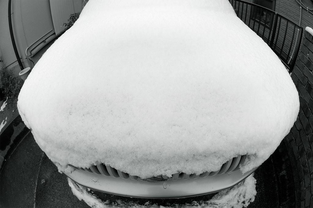 Snow|RASHEEN