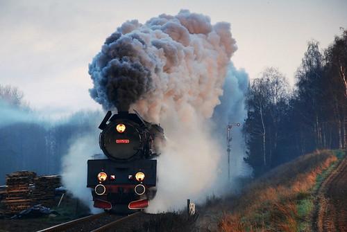 morning spring poland polska eisenbahn railway steam polen locomotives poranek dampflok wiosna kolej wielkopolska pociąg wolsztyn leszno pociągi ol49 parowozy dampfloks oelka ol4959 rozkładowy porowóz