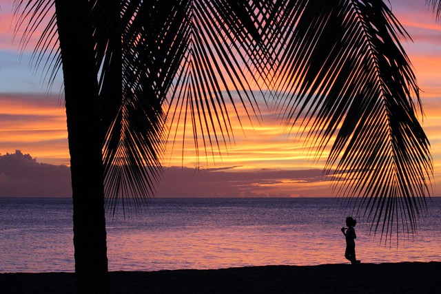 Coconut and child silhouettes at sunset, Carribean Sea, Le Carbet Beach, Martinique, France