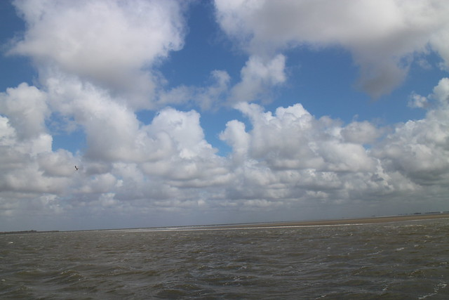 North Sea sandbank
