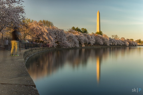 washingtondc dc washington moment tidalbasin reflection longexposure tripod pentax pentaxk3 lake photographer people storytelling story dusk sunset cherryblossoms blooms spring tamron leadinglines lines thirds composition thirdscomposition washingtonmomument landscape cityscape city abstract abstraction fineart art