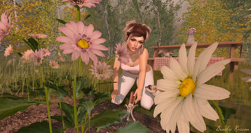 Tending To My Lady Garden 😆
