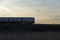 IMGP7910