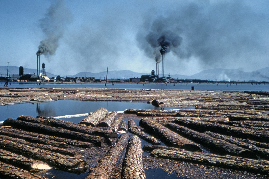 Found Photo - US Unknown Logging and River 1969.tif