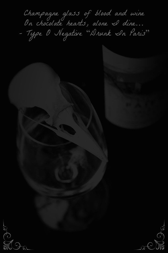 Wine Bottle 4 11 bis