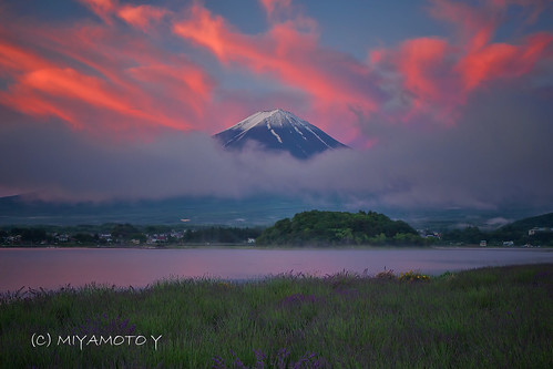 morning cloud lake sunrise lavender fujisan mtfuji fujiyama